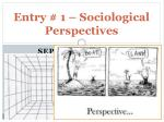 Entry # 1 – Sociological Perspectives