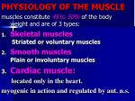 PHYSIOLOGY OF THE MUSCLE
