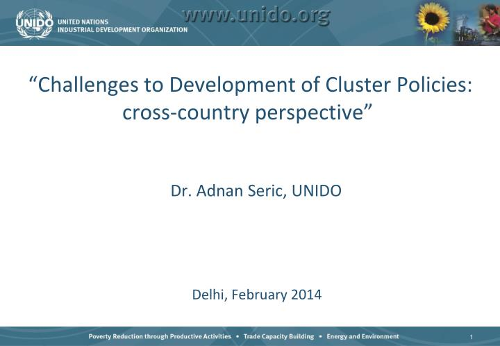 challenges to development of cluster policies cross country perspective n.