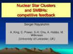 Nuclear Star Clusters  and SMBHs: competitive feedback