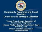Community Programs and Court Services Overview and Strategic Direction
