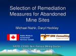 Selection of Remediation Measures for Abandoned Mine Sites