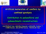 Artificial maturation of conifers by confined pyrolysis