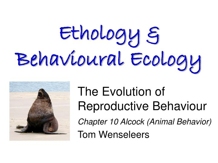 the evolution of reproductive behaviour chapter 10 alcock animal behavior tom wenseleers n.