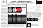 Spectroscopy of the Brain in Primary Lateral Sclerosis
