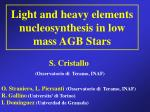 Light and heavy elements nucleosynthesis in low mass AGB Stars