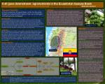 It all goes downstream: agronutrients in the Ecuadorian Guayas Basin