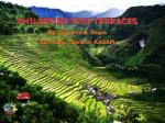 PHILIPPINE RICE TERRACES By: Giovanni B. Reyes Secretary – General, KASAPI