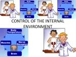 CONTROL OF THE INTERNAL ENVIRONMENT