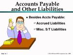 Accounts Payable and Other Liabilities