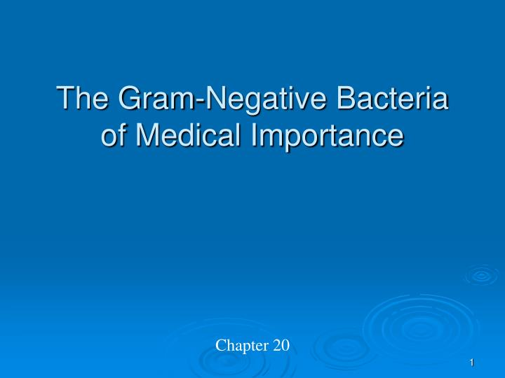 the gram negative bacteria of medical importance n.