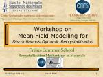 Workshop on Mean Field Modelling for Discontinuous Dynamic Recrystallization