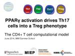 PPAR γ  activation drives Th17 cells into a  Treg  phenotype