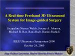 A Real-time Freehand 3D Ultrasound System for Image-guided Surgery