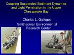 Coupling Suspended Sediment Dynamics and Light Penetration in the Upper Chesapeake Bay