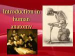 Introduction in human anatomy
