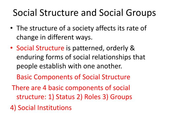 social structure and social groups n.