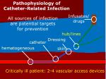 Critically ill patient: 2-4 vascular access devices