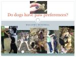 Do  dogs  have paw preferences?