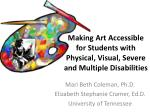 Making Art Accessible for Students with Physical, Visual, Severe and Multiple Disabilities