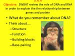 What do you remember about DNA? Think about…. Structure Function Building blocks Base-pairing
