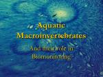 Aquatic Macroinvertebrates