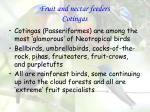 Fruit and nectar feeders Cotingas