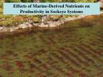 Effects of Marine-Derived Nutrients on Productivity in Sockeye Systems