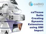 caTissue Suite Creating Dynamic Extensions using XMI Import