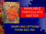 INHALABLE PARTICULATE MATTER