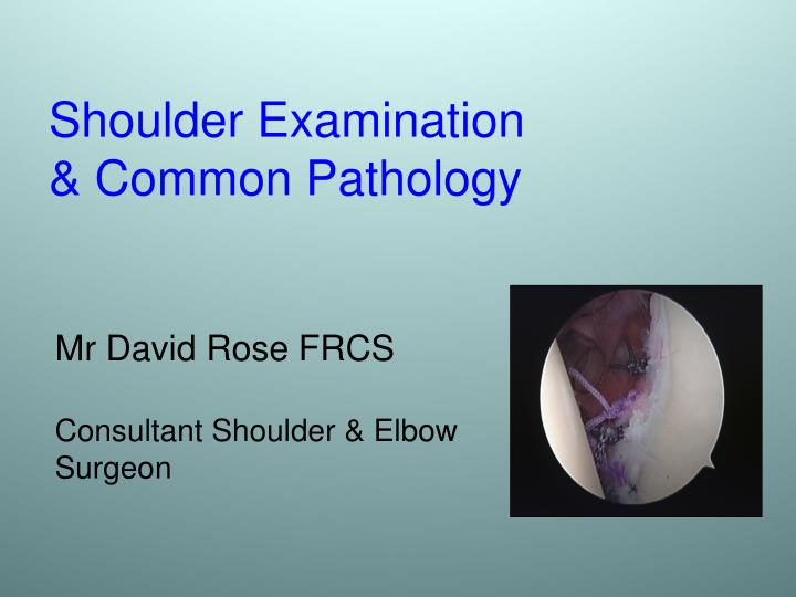 shoulder examination common pathology n.