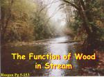 The Function of Wood in Stream