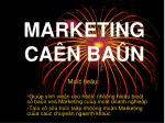 MARKETING CAÊN BAÛN