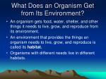 What Does an Organism Get from Its Environment?