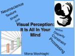 Visual Perception: It Is All In Your Mind