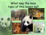 What may the main topic of this lesson be?