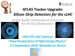 ATLAS Tracker Upgrade: Silicon Strip Detectors for the sLHC