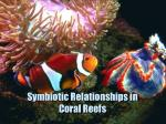 Symbiotic Relationships in Coral Reefs