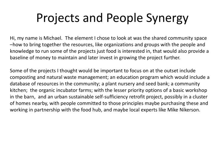 projects and people synergy n.