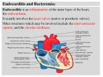 Endocarditis and Bacteremia: