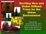 Exciting New and Under Utilized Trees for the Urban Environment