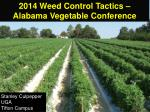2014 Weed Control Tactics – Alabama Vegetable Conference