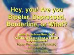 Hey, you! Are you Bipolar, Depressed, Borderline, or What?