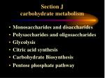 Section J carbohydrate metabolism