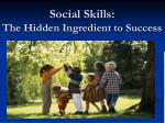 Social Skills: The Hidden Ingredient to Success