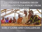 COOPERATIVE FARMERS BEGIN FIRST GRADE COCOA EXPORT FROM SIERRA LEONE