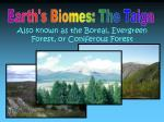 Earth's Biomes: The Taiga