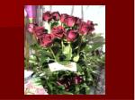 Season of Roses roadside rose short handwritten poem second date long stem rose