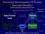 Functional Neuroanatomy Of Trauma Spectrum Disorders