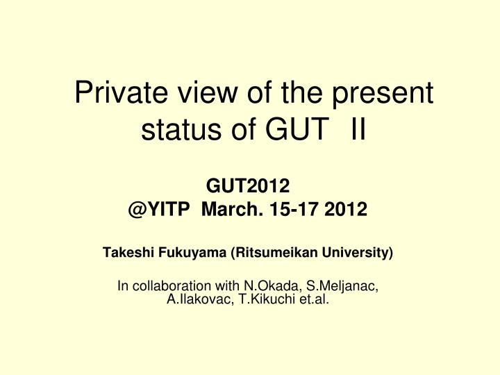 private view of the present status of gut ii n.